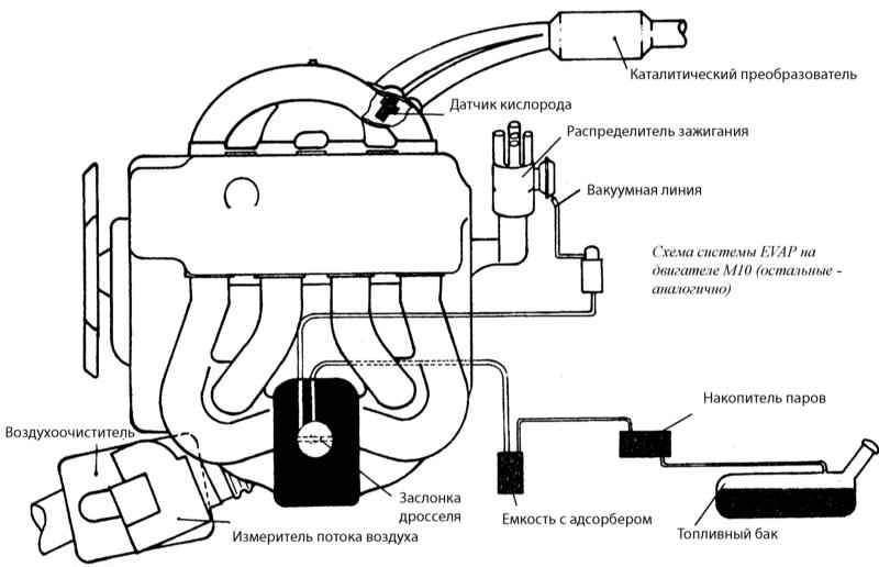 Схема системы EVAP на